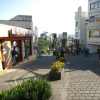済州で女子会 5 オルレ6番コース