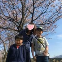 2017 静内お花見♪
