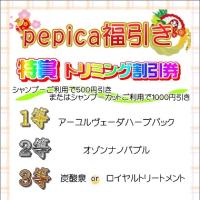 pepica伊勢丹松戸店☆サロンのお得情報☆