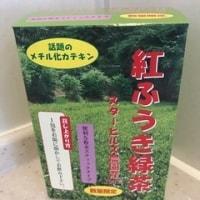 紅ふうき緑茶