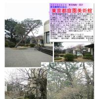 散策 「東京中心部南 246」 東京都庭園美術館