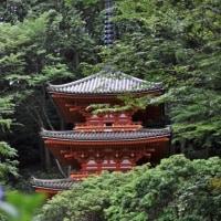 紫陽花の寺 岩船寺へ