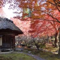 きままな京都 8