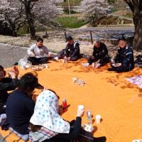 満開の桜の元、花見開催!!