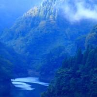 山里の朝 杉林とダム湖