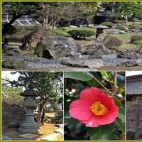 国指定名勝「金平成園」の景観