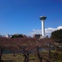 函館・ラッキーピエロで チャイニーズチキンバーガー