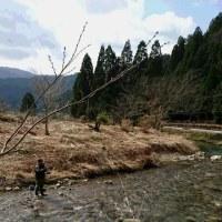 曇りのち晴れ(*^^*)♪