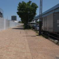 初夏の豊洲市場:5街区(青果棟)と環状第2号線有明北橋 PART2