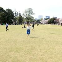 桜とキミとワチャワチャと 吉水翔子さん(4)