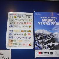軽井沢のいろいろ 軽井沢の春野菜・・