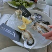 日本酒の会:横浜牡蠣食べよう