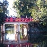 氷川神社十日市で熊手を!