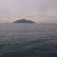 H29.2.1 広島湾 釣り