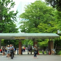 新宿御苑で風景画展を鑑賞後、バラ花壇など苑内をめぐる(東京)