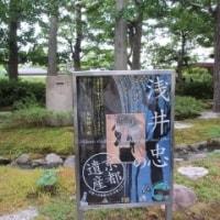 芸術と緑に癒される泉屋博古館