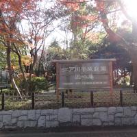 紅葉の行船公園