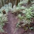 マッキーの山登り:西吾野駅~高山不動~関八州見晴台~白滝~不動滝~大滝~西吾野駅