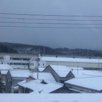 雪情報 昨日 今朝