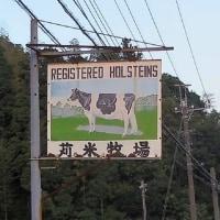 大多喜町、 『チーズ工房 千 (せん) 』 さんで、チーズをいただきました