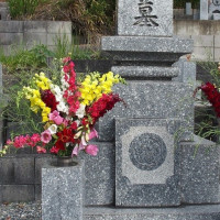 今月のお墓参り。