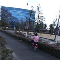自転車練習のちランチ☆