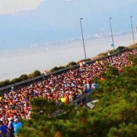 『湘南マラソン』 23941名