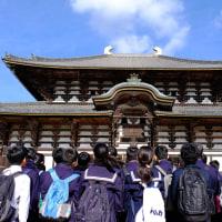 久しぶりに東大寺を訪ねました