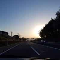葉桜に 思ひし朝の かへり道