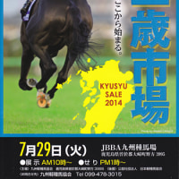�ڶ彣���лԾ�(Kyusyu Sale��Yearlings)�ۤ�����7/29(��)����!