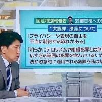 東京新聞:国連報告者、首相に書簡