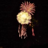 苧ヶ瀬池の花火大会