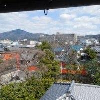 京都迎賓館・旧三井家下鴨別邸・長徳寺オカメザクラ