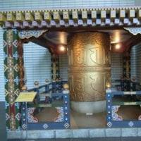 松山祭りとブータン展