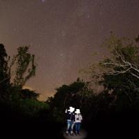 《夜のバードウォッチング!》石垣島旅行5