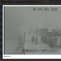 1月23日琵琶湖近辺の様子