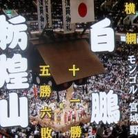 大相撲・高安10勝