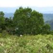 坊主岳登山