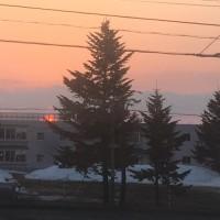 オレンジ色の太陽が空を染めている