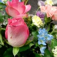 尾道の桜の香り