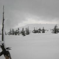4月21日 横岳