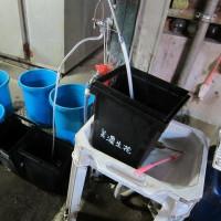 水替え~(+o+)