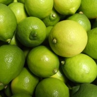 自然栽培レモン