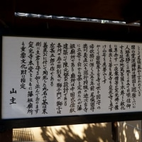 瀬戸市の定光寺へ