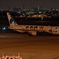 『ゆめジェット〜.You&Me〜』ANA    創業60周年を記念した特別塗装機   2013.2 〜運航している。