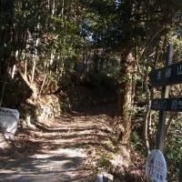生籐山から和田峠