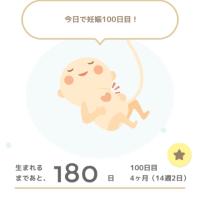 妊娠100日目(14週2日)