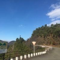走り納め・・・嵐山高雄パークウェイ