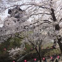 観桜会とけんか祭り