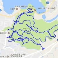 津久井湖城山公園全ルート走破